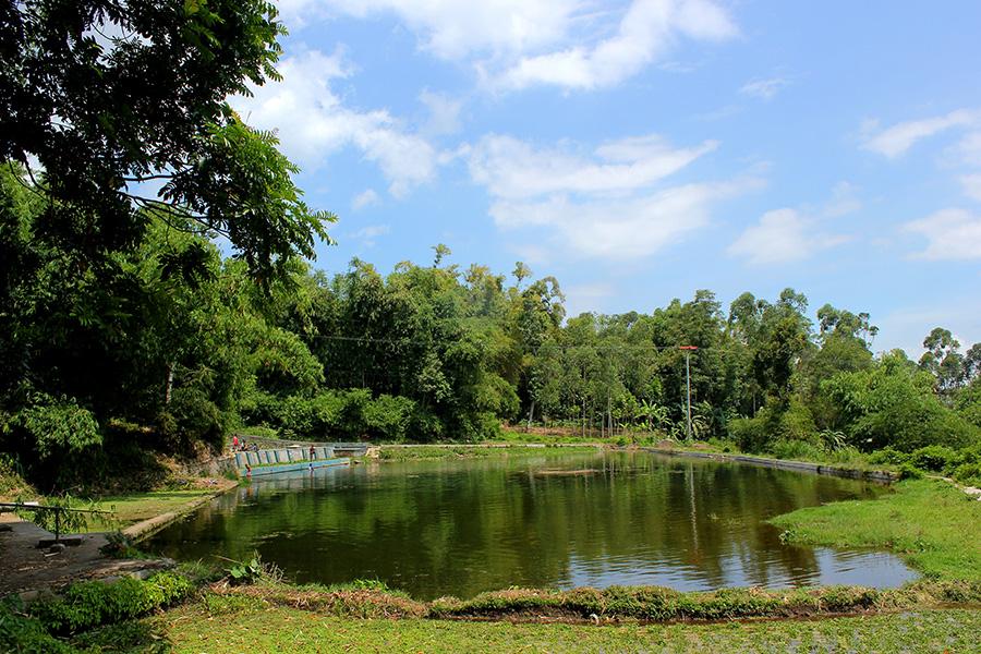 Sedikit Eksplore Situ Rantun dan Situ Tanjung